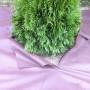 Gartentvliese